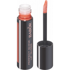 Matte Perfect Shine Lip Gloss 01